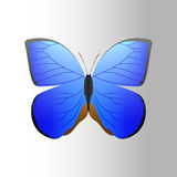 Le papillon bleu coloré avec la silhouette gratuite de présent de mouche d'été décoratif abstrait de modèle et la nature de beaut Images libres de droits