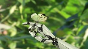 Le papillon de chou débarque sur la main du ` s de robot clips vidéos