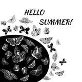 Le papillon silhouette la collection d'isolement sur le fond blanc Image stock