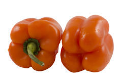 Le paprika doux délicieux Photos libres de droits