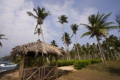 Le paradis Image libre de droits