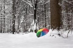 Le parapluie de Colorfull dans une neige a couvert forrest Images libres de droits