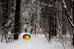 Le parapluie de Colorfull dans une neige a couvert forrest Photo libre de droits