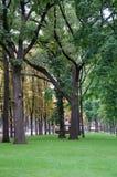 Le parc Photo libre de droits