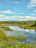 Le parc d'état d'Adirondack Photographie stock