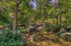 Le parc d'état d'un état à un autre est situé sur le St Croix River près de Taylo Photographie stock libre de droits