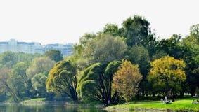 Le parc d'automne Photographie stock