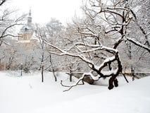 Le parc d'hiver avec la neige a couvert le manoir extérieur Images stock