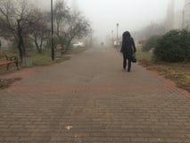 Le parc dans le brouillard image stock