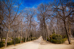 Le parc de Buen Retiro à Madrid Espagne images stock