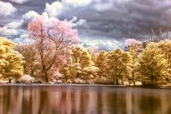 Le parc de Leazes est à Newcastle sur Tyne dans l'infrarouge Photographie stock libre de droits