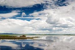 Le parc de marécage de Ruoergai Photo libre de droits