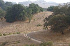 Le parc de Shiloh Ranch Regional The inclut les régions boisées de chêne, forêts des plantes vertes mélangées, arêtes avec des vu photo libre de droits
