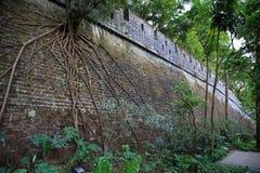 Le parc de Yuexiu, mémoire de Canton a une période de mur de ville antique de dynastie de Ming en Chine images libres de droits