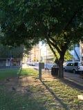 Le parc en Australie photo libre de droits