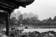 Le parc grand de vue Image libre de droits