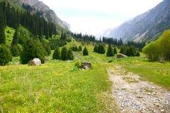 Le parc national d'Archa d'aile du nez dans les montagnes de Tian Shan de Bichkek Kirghizistan Photographie stock libre de droits