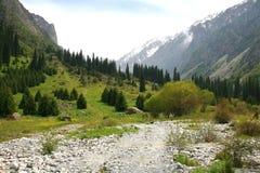 Le parc national d'Archa d'aile du nez dans les montagnes de Tian Shan de Bichkek Kirghizistan Photo stock