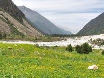 Le parc national d'Archa d'aile du nez dans les montagnes de Tian Shan de Bichkek Kirghizistan image libre de droits