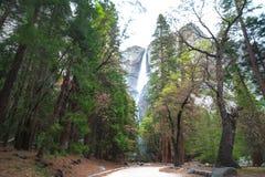 Le parc national de Yosemite est un parc national des Etats-Unis Photo libre de droits