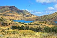 Le parc national Torres del Paine Photographie stock libre de droits