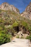 Le pareti del canyon di Colca fotografia stock libera da diritti