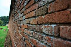 Le pareti del tempio Fotografia Stock