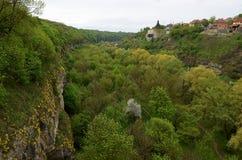 Le pareti di pietra ripide di vecchia fortezza sono coperte di fiori gialli e di alberi verdi contro lo sfondo del immagine stock