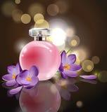 Le parfum rose du ` s de femmes de bouteille avec le ressort fleurit des crocus sur le fond brouillé Vecteur Photo libre de droits