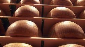 Le parmesan roule des formes de fromage assaisonnant à une usine de Reggiano de parmesan banque de vidéos