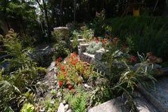 Le parterre décoratif présenté des pierres avec l'élevage fleurit entre elles a placé dans la nuance des arbres Photo stock