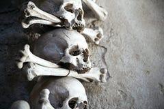 Le parti di scheletro umane si trovano ancora e si acquietano Fotografia Stock Libera da Diritti