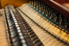 Le parti interne delle corde del pianoforte a coda Immagine Stock
