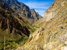 Le parti più profonde del canyon di Colca nel Perù Fotografie Stock Libere da Diritti