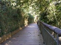 Le passage couvert en bambou Photos stock