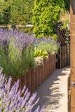 Le passage couvert mène par le beau jardin méditerranéen photographie stock