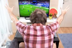 Le passioné du football célèbre le but Photo libre de droits