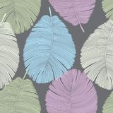 Le pastel modifie la tonalité le modèle sans couture de plumes détaillées sur le gris Images stock