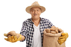 Le patate della tenuta dell'agricoltore ed il sacco anziani della tela da imballaggio hanno riempito di patate Fotografia Stock Libera da Diritti