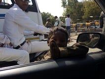 Le pauvre enfant indien prient à la voiture à l'intérieur des personnes disent me donnent svp l'argent Image libre de droits