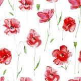 Le pavot fleurit le modèle sans couture illustration stock