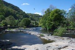 Le Pays de Galles, Llangollen, la rivière Dee photographie stock libre de droits