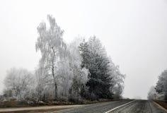 Le pays des merveilles blanc de l'hiver Image libre de droits