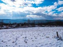 Le pays des merveilles couvert par neige image libre de droits
