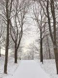 Le pays des merveilles d'hiver Photographie stock