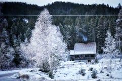 Le pays des merveilles d'hiver Photos stock