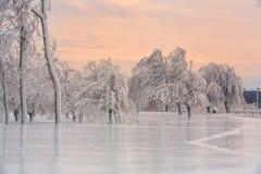 Le pays des merveilles d'hiver de la glace et de la neige sur l'île de chèvre Image libre de droits