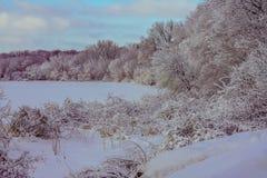 Le pays des merveilles d'hiver en Eden Prairie, Minnesota images stock