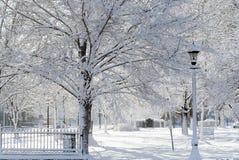 Le pays des merveilles de l'hiver image stock
