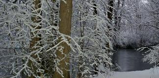 Le pays des merveilles 2 de l'hiver Photographie stock